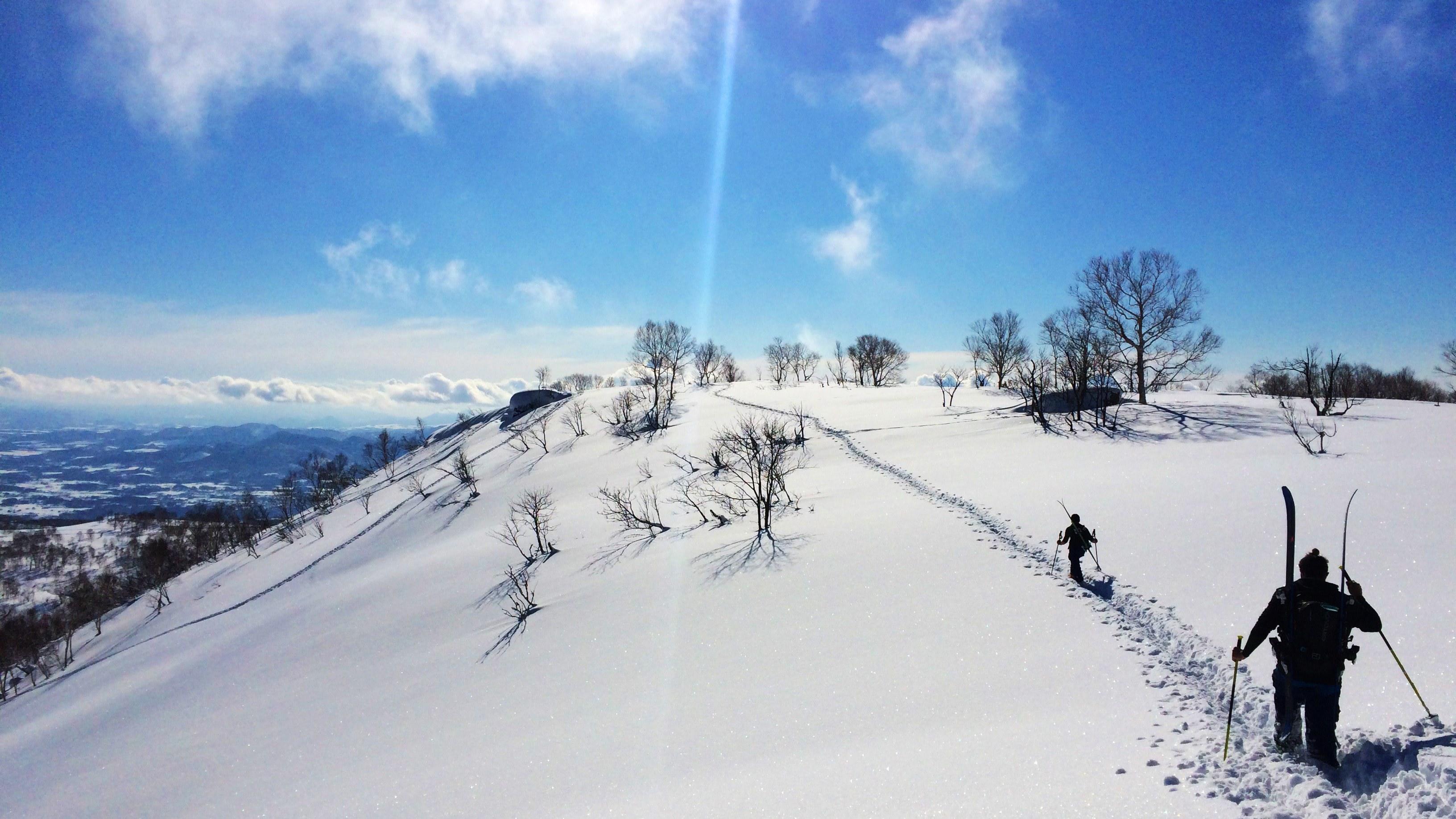Niseko backcountry